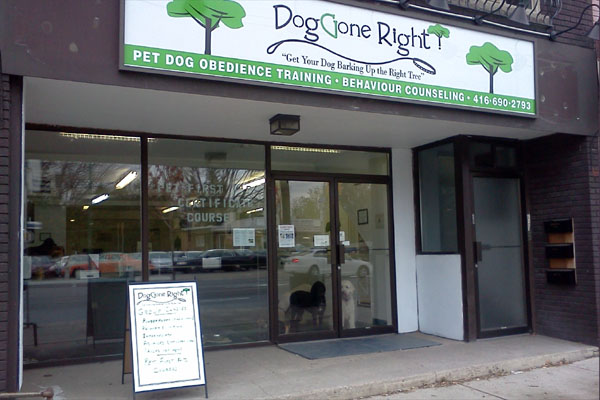 Dog Training Centre on Danforth